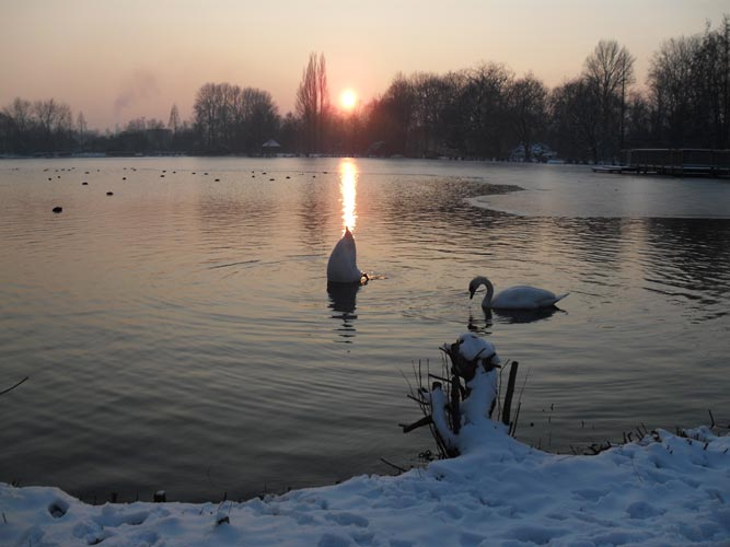 Nordpark im Winter